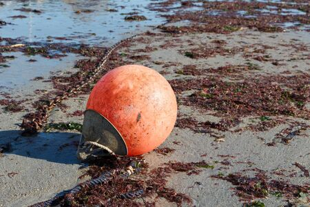 Buoy and chain on the sand at low tide