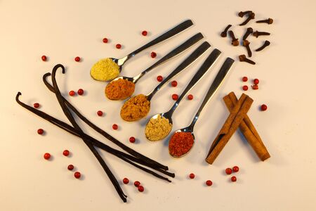 Different spices powder in teaspoon with cinnamon, cloves, vanilla pods and red berries Imagens