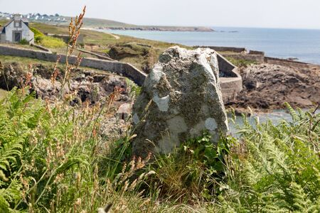 Stone with lichen on the coast in Brittany