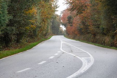 Road between trees in Brittany during autumn Imagens