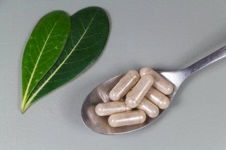 Capsules of plants extract in a tea spoon and leaves Stock Photo