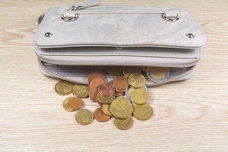 Euros coins take out of a gray purse