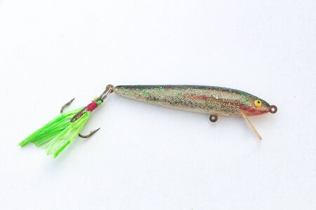 Hard bait for fishing cephalopod and squid