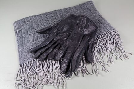 Gray scarf in cotton and black gloves in cotton and leather 版權商用圖片