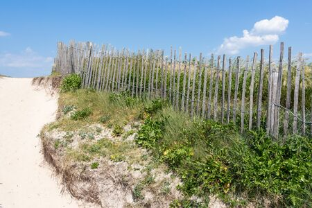 Fence made of wooden slats in the dunes in Esquibien in Brittany 版權商用圖片