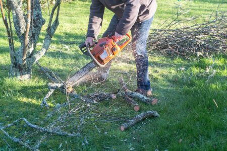 Lumberjack cutting branch with a chain saw after trimming a tree 版權商用圖片
