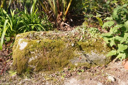 Stone trough as decoration in a garden