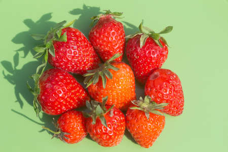Strawberries after harvesting in a vegetable garden Standard-Bild