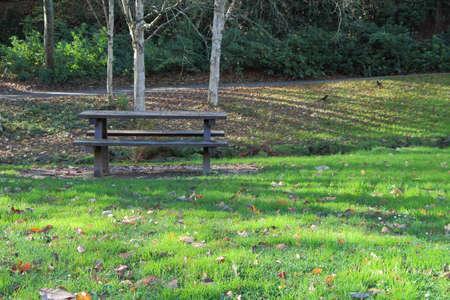 Wooden picnic table in a park during autumn Foto de archivo
