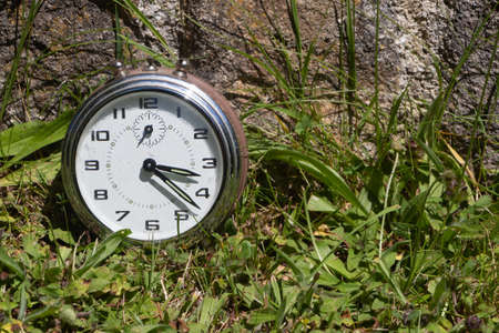 Metal alarm clock in a garden to symbolize it is time to take care of nature