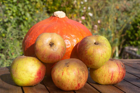 Pumpkin and apples on a table during autumn