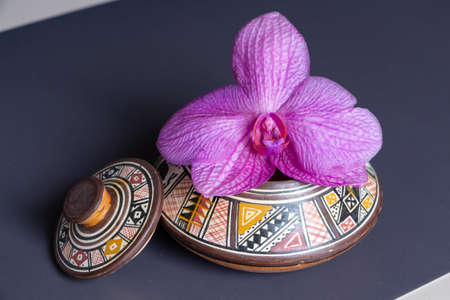 Pink orchid flower in a pot as decoration.