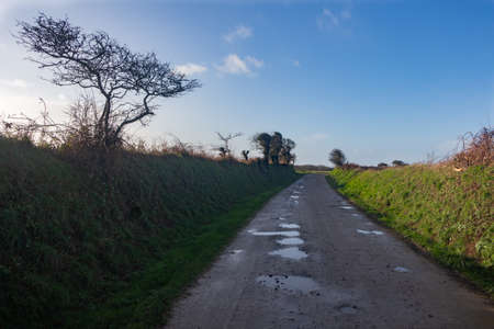 Footpath in the countryside in Brittany during winter