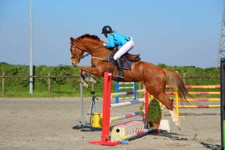 Woman and chestnut horse jumping a fence Stock fotó