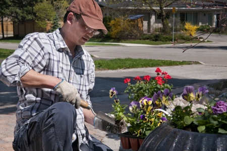 Man Gardening Banco de Imagens