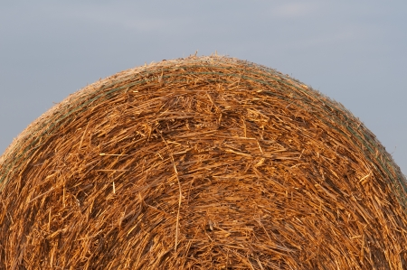 Golden Straw Bales - Stock Image photo