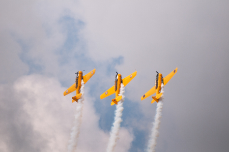 The Canadian Snowbirds demo team in flight - Stock Image Editorial