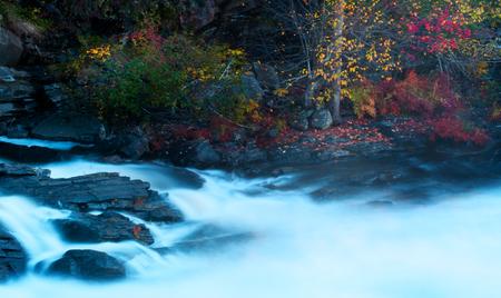 Fall Morning photo