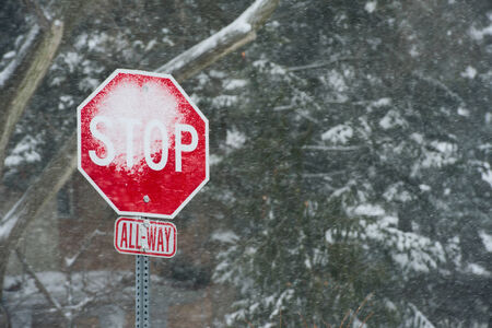 burried: Signs   Stop Sign with Snow
