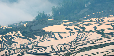 Rice Terraces and farming village in Longsheng, Guangxi province, China. Stock Photo