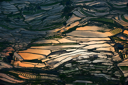 Rice Terraces and farming village in Longsheng, Guangxi province, China. Stockfoto