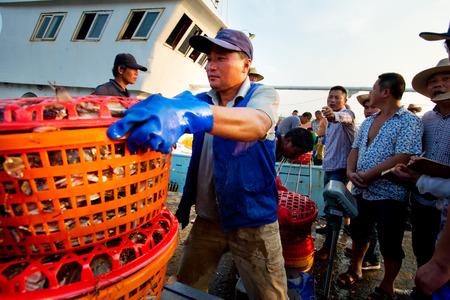 Fishermen fish market transactions