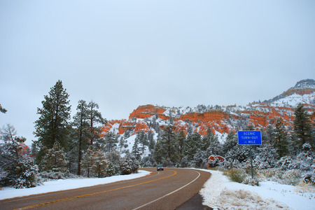 bryce canyon: The fog in Bryce Canyon National Park,
