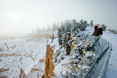 look out: Look out on the Bryce canyon