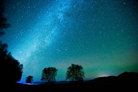 Milky Way over the Forest Stok Fotoğraf - 38350215