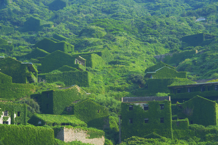 The decline of fisheries resources, China Zhejiang Shengsi Shengshan Island fishermen have relocated, becoming no village, abandoned houses covered with green plants Stock Photo