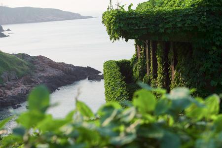 fischerei: Der Rückgang der Fischereiressourcen haben China Zhejiang Shengsi Shengshan Insel Fischer verlegt und wurde kein Dorf, verlassene Häuser mit grünen Pflanzen bedeckt