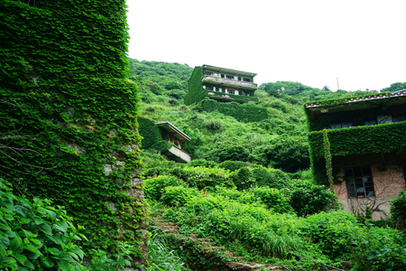 The decline of fisheries resources, China Zhejiang Shengsi Shengshan Island fishermen have relocated, becoming no village, abandoned houses covered with green plants Фото со стока