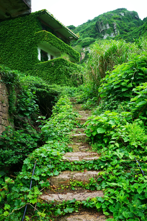 invaded: The decline of fisheries resources, China Zhejiang Shengsi Shengshan Island fishermen have relocated, becoming no village, abandoned houses covered with green plants Stock Photo