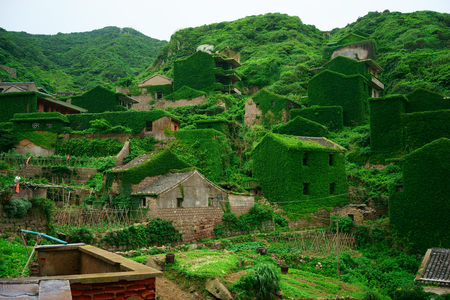 The decline of fisheries resources, China Zhejiang Shengsi Shengshan Island fishermen have relocated, becoming no village, abandoned houses covered with green plants Stok Fotoğraf