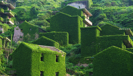climbing plant: The decline of fisheries resources, China Zhejiang Shengsi Shengshan Island fishermen have relocated, becoming no village, abandoned houses covered with green plants Stock Photo