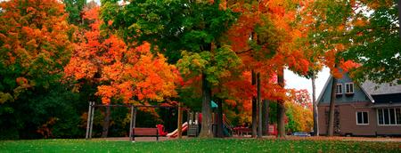 秋の公園遊び場
