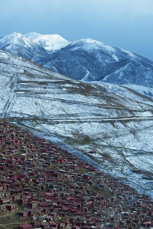 warren: Tibet Buddhist Academy in snow day, Sichuan, China