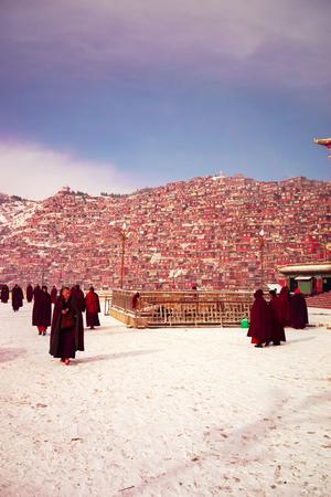 Tibetan Buddhist monks in the Sichuan Buddhist College, Seda China