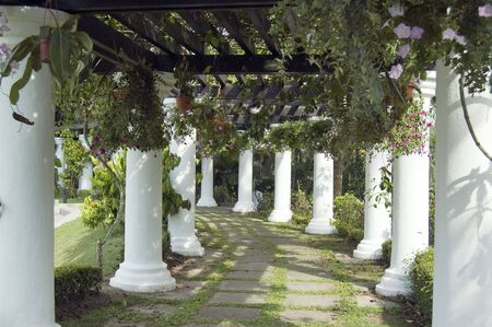 This is a beautiful shaded garden walk way which decorated with Rome Pillar at the both side and cover with plant on the overhead Banque d'images