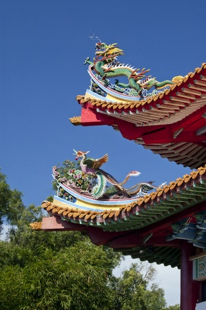 The asian chinese dragon and phoenix statue at the chinese temple roof top photo
