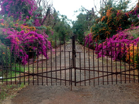 gated: Gated Eden