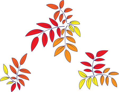 Background decoration from autumn leaves Illustration