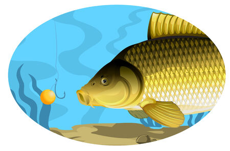 Common carp catching on bait illustration with transparent objects and opacity masks