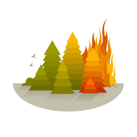 Wildfire disaster concept with spruce trees, simplify flat style, isolated