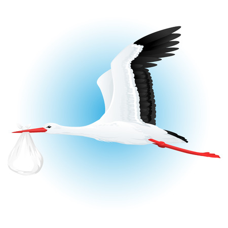 White stork flying with bundle quality illustration