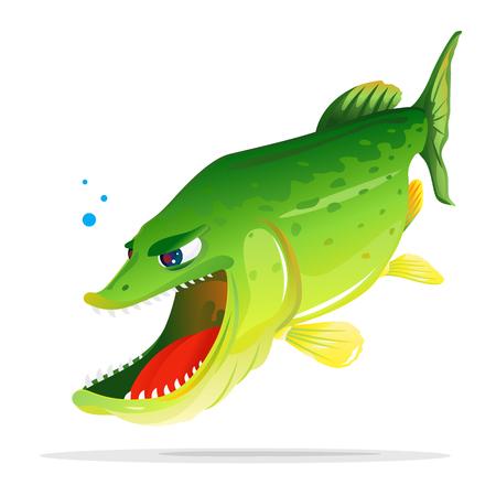 Dibujos animados de pez lucio hambriento enojado boca abierta con dientes afilados, caza de peces para una víctima, aislada en blanco Ilustración de vector