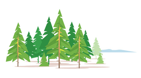 Spruce forest on white background in a simple geometric form, green triangular spruce with truncated branches in simple colors stylization