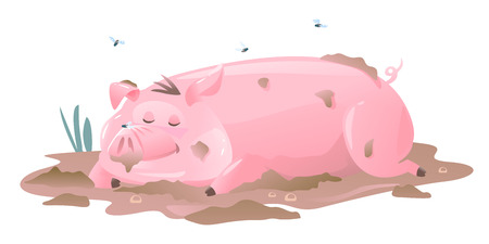 One dirty pig cartoon lies on mud and sleeps, sleeping pig in the middle of puddle with mud and flies, isolated on white