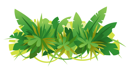 Composition of green jungle leaves assembled together in horizontal view, isolated on white, decoration of tropical plants assorted together illustration