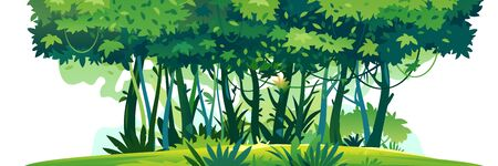 Wild jungle forest with trees, bushes and lianas standing on green lawn and isolated on white background, decorative composition of jungle plants on one side, dense vegetation of the jungle  イラスト・ベクター素材